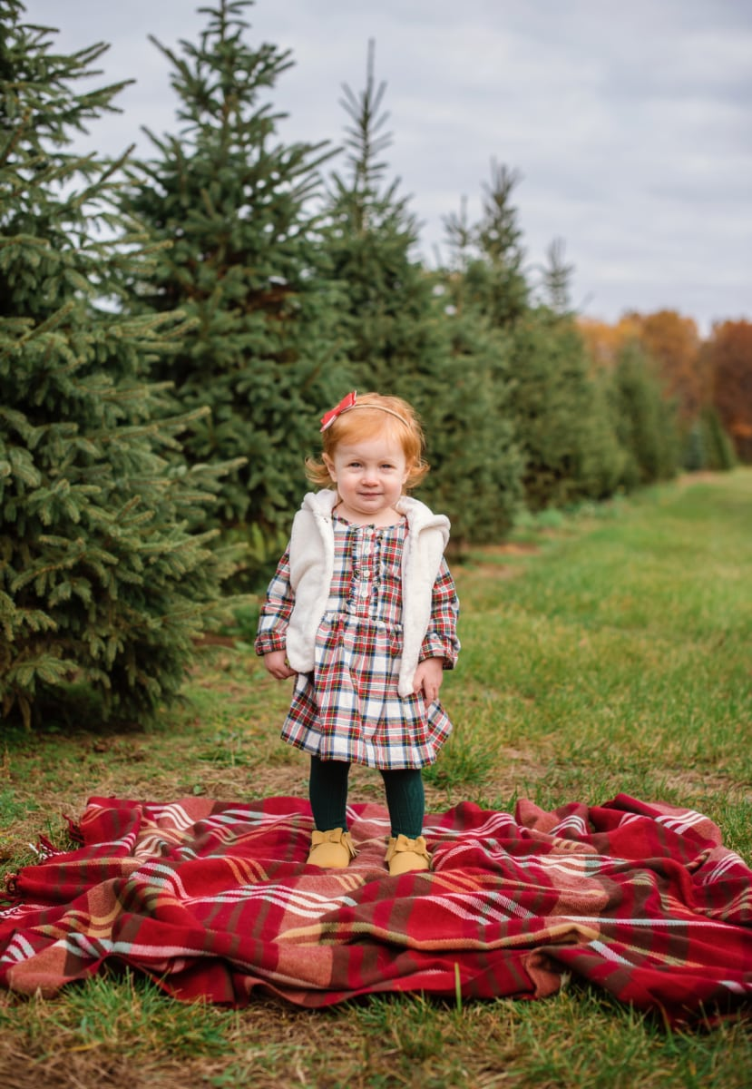Christmas Tree Farm Minis | Howell, MI